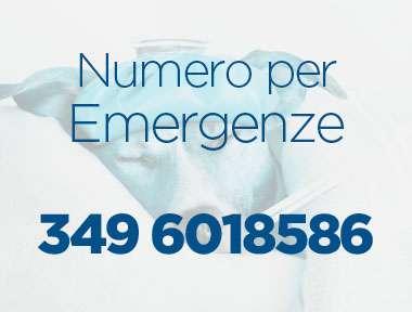 Emergenze-2